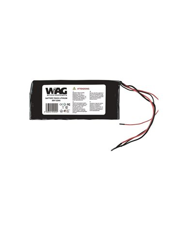 Wag Lithium Battery Pack 24V 10, 4Ah