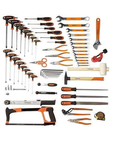 Bicisupport Tools Set 81Pcs (From Item 600 To 658) With Hexagonal And Torx Wrenches With T Handle