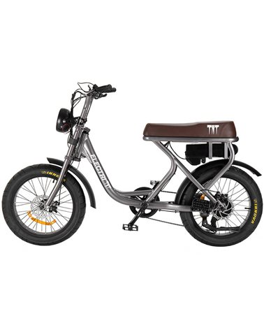 "Electri TNT e-Bike Fat 20"" 250W, Grey"